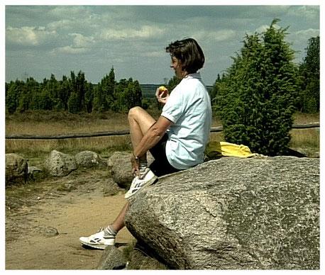 Naturpark Lüneburger Heide Findling Hannibals Grab