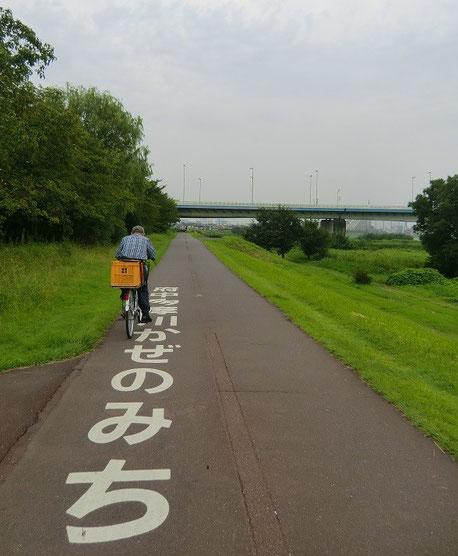 9月8日(2014) 府中多摩川かぜのみち:多摩川サイクリングロードの稲城大橋の近くで