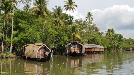 Boats in the Backwaters Cochin Kerala India private city tour