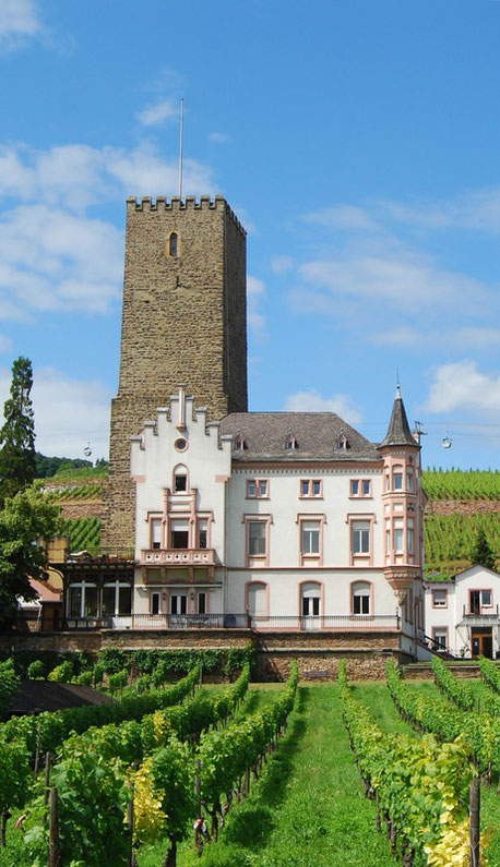 Rüdesheim Winery Germany cruise Jewish tour Rhein