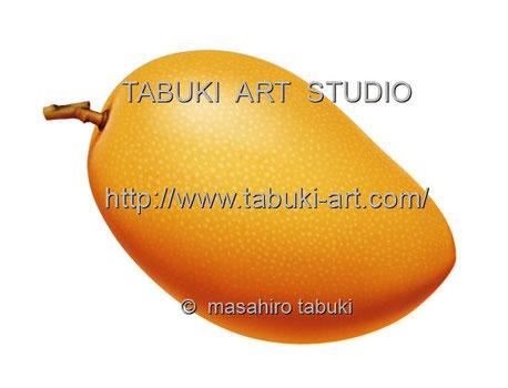 RD1273 マンゴー イラスト mango トロピカルフルーツ 果物