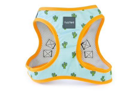 Hundestrand Hundegeschirr Geschirr Tucson Kaktus Orange Blau Fuzzyard