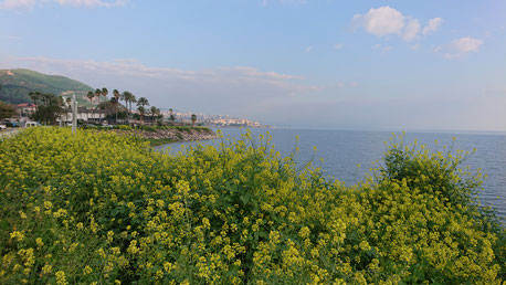 The Sea of Galilee view