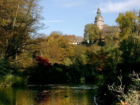 Viele Teiche und der alte Baumbestand kennzeichnen den Berleburger Schlosspark.
