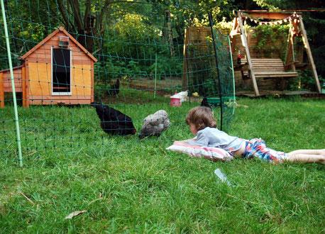 Kinder lieben es den Hühnern zu zuschauen
