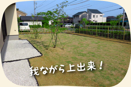 岐阜の木曽石を敷いて芝生を張った素敵なお庭【門西造園 作】