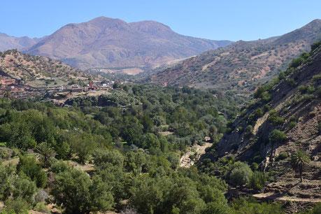Oasis de Tachguelte, versant sud du Haut Atlas sud-occidental, ©Frédérique Courtin