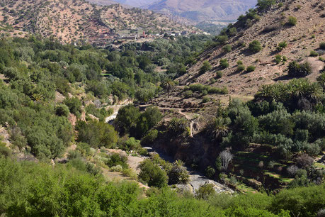 Oasis de Tachguelte, versant sud du Haut Atlas sud-occidental, ©Frédérique Courtin-Tarrier