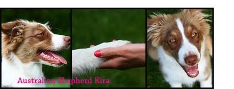 Aussie Kira mit Lisa