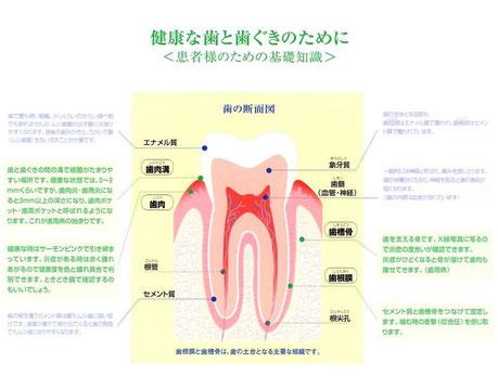 歯科一般 永井歯科医院 茨木市