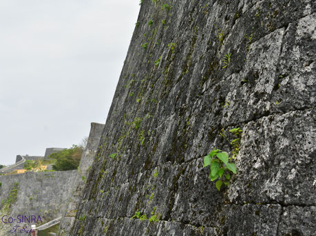 首里城城壁