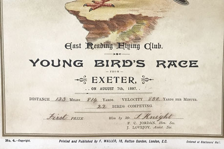 East Reading Flying Club Pigeon Racing 1890's