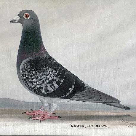 J Browne, Portrait of a racing pigeon 1925 Master McGrath