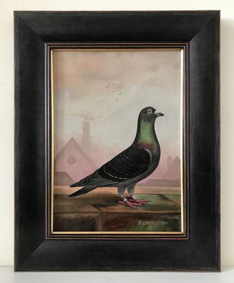 Naive folk art racing pigeon A Embleton
