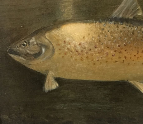 Brown Trout Lough Mask 1932