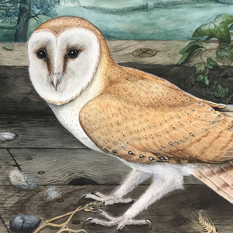Large Naive Watercolour of an Owl and her Chicks
