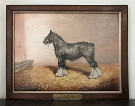 Shire heavy horse, Lymm Grey, signed Fred Thurlby, 1907