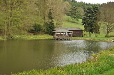 Teichanlage vor den Toren Ellingshausens