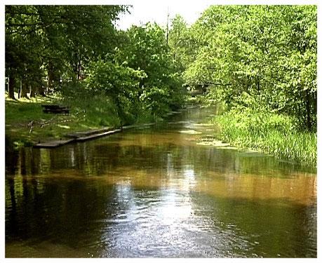Heideort Müden Oertze an der Wassermühle