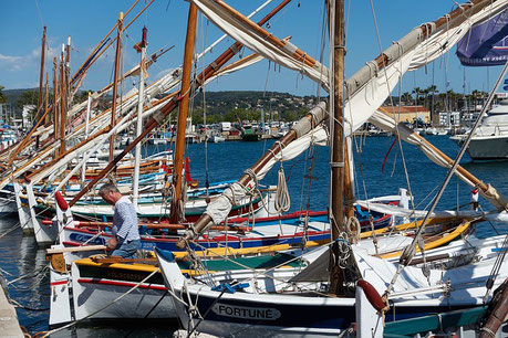Boats in the Harbour Bandol France