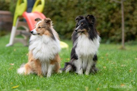 Rosie und ihre Schwester Nelly