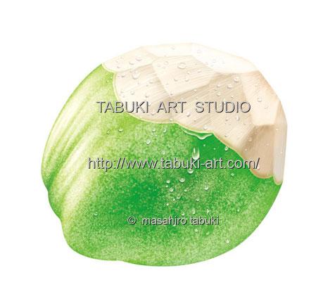 トロピカルフルーツ ヤシの実 ジュース イラスト