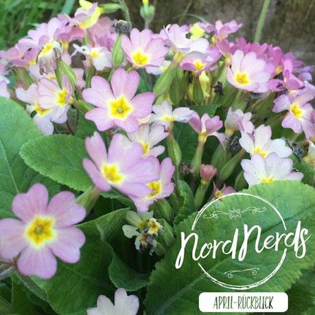 NordNerds Monatsrückblick für April 2018