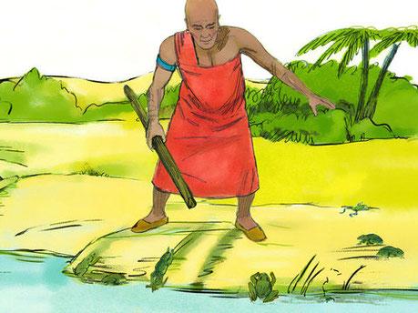 Les magiciens égyptiens ont également réussi par leurs sortilèges à faire monter les grenouilles sur le pays. Exode 8:3 : « Cependant les magiciens en firent autant par leurs sortilèges: ils firent monter les grenouilles sur l'Egypte ».