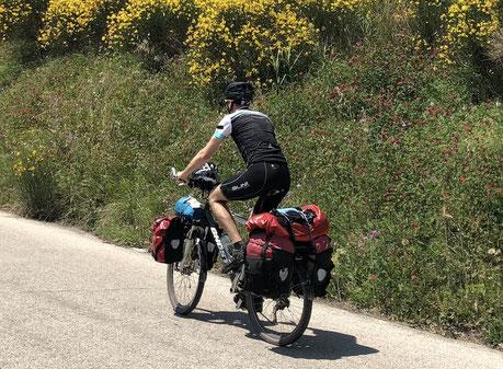 Ghost-bikes.com, www.berghuhn.de