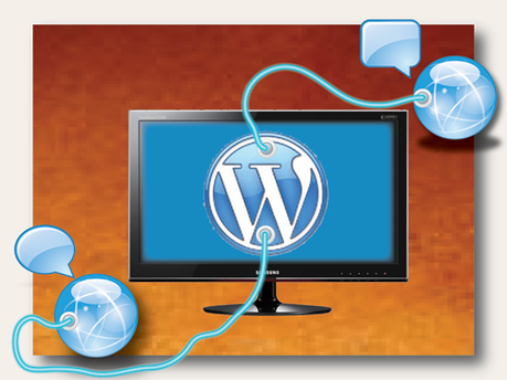 Wordpress plugged in image