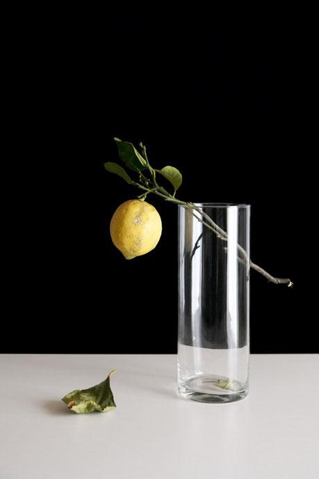 keine Handlung (Lemon-act)  - Masami Hirohata