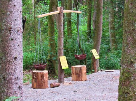 Die Wald-Waage im Zahlenwald