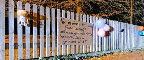 Transparent am Zaun in Wegenstedt