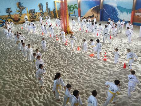 Taekwondo-Unterricht für Kinder von 9-12 Jahren