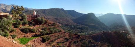 Maroc 2013 : Les routes de l'Atlas, paysage de montagne terre rouge avec plantations d'oliviers