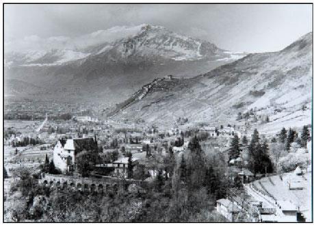 Histoire de la trufficulture en Isère