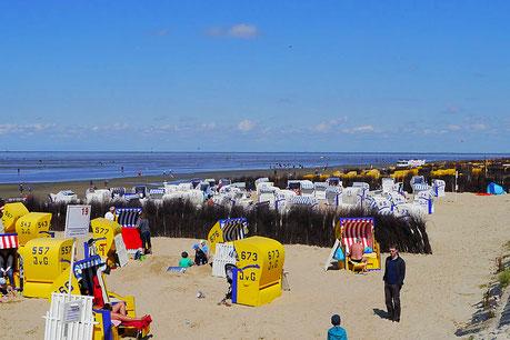 Bild: Der Sandstrand in Cuxhaven Duhnen, direkt vor den Ferienwohnungen Cuxhaven Duhnen