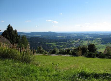 Blick von Obergrainet aus auf die vielfältige Natur und Landschaft im Landkreis Freyung-Grafenau (Foto: Lenz)