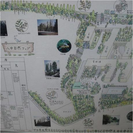 グリーンマップ