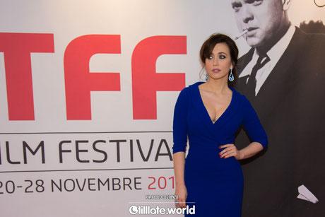 33° Torino Film Festival
