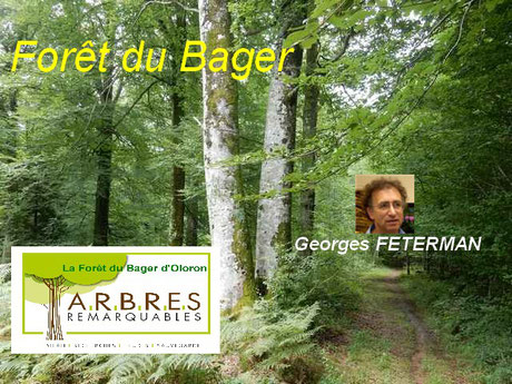 Georges Féterman remettra le Label Arbres remarquables à l'asociation ACCOB à Oloron Sainte Marie.
