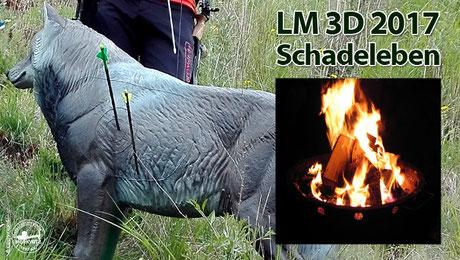 Merkwitzer bei der LM 3D 2017 in Schadeleben
