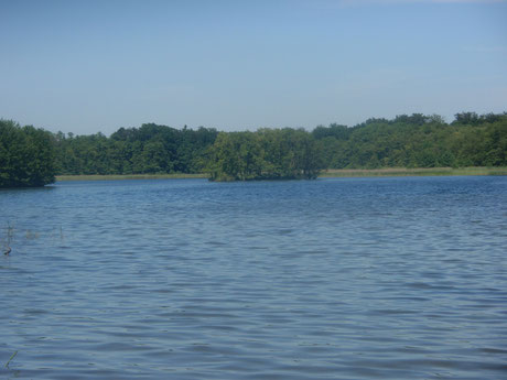 Kinpritzer See
