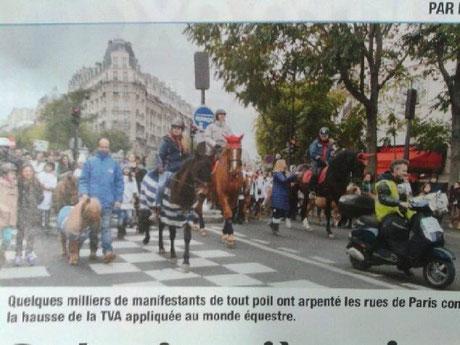 Cheval Pratique, Vénus Pearl à la manif de Paris contre la hausse de la TVA.