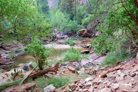 Emerald Pool Trail, Zion Nationalpark, Peter Rehberg
