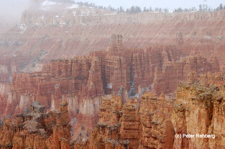 Bryce Amphitheater, Bryce Canyon, Peter Rehberg