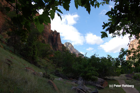 Grotto Trail, Zion National Park, Peter Rehberg