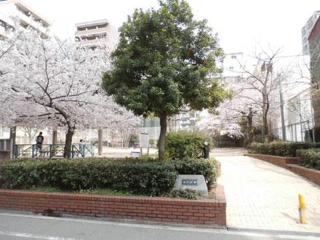 道仁公園(64m)