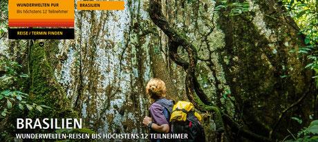Basilien Wunderwelten Reisen bei Singer Reisen & Versicherungen buchen...f