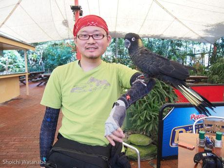 花鳥園よろしく、鳥さんとの写真は無料で簡単に撮れます。カワイイ。